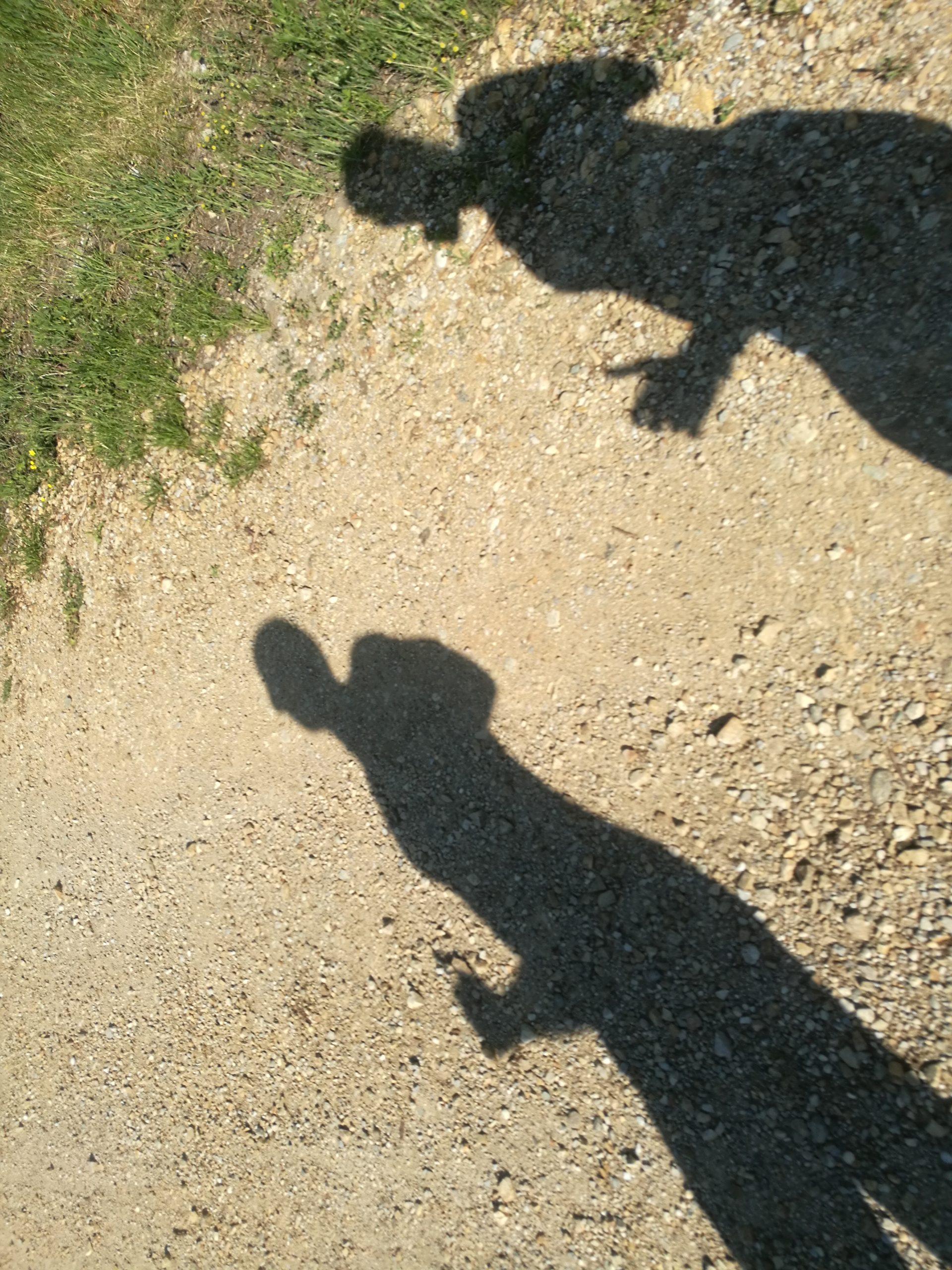 Schatten von 2 Läufern