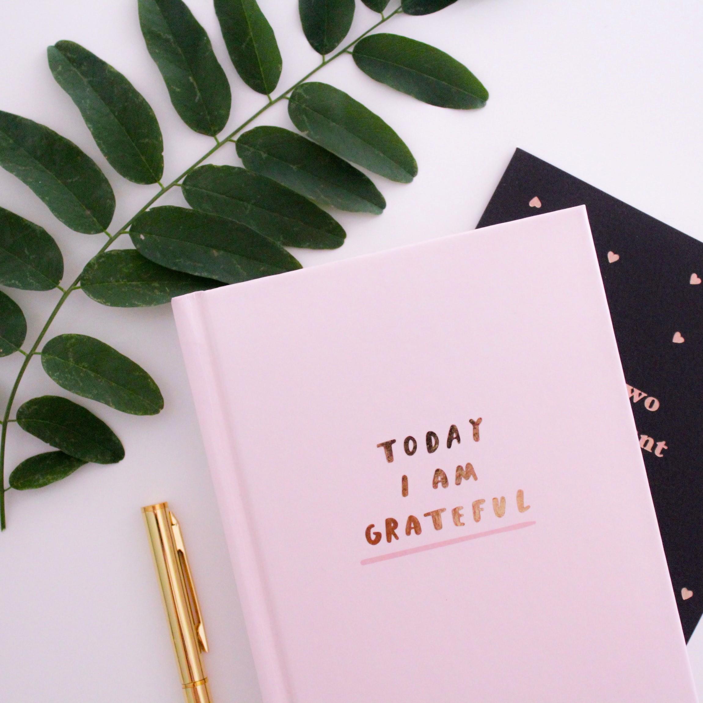 Tagebuch mit Stift und Pflanze