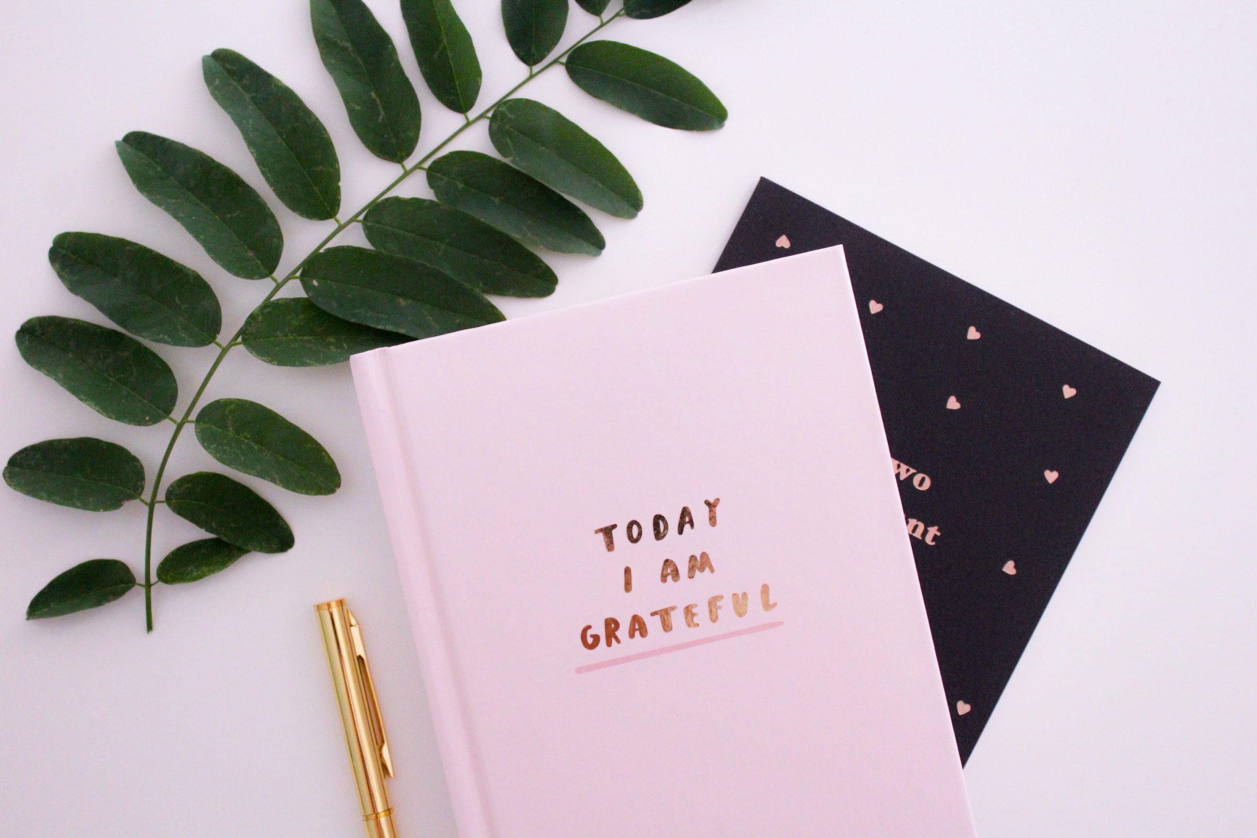 Tagebuch mit Pflanze & Stift